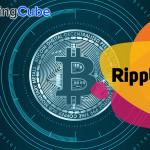 Live Ripple Price Chart
